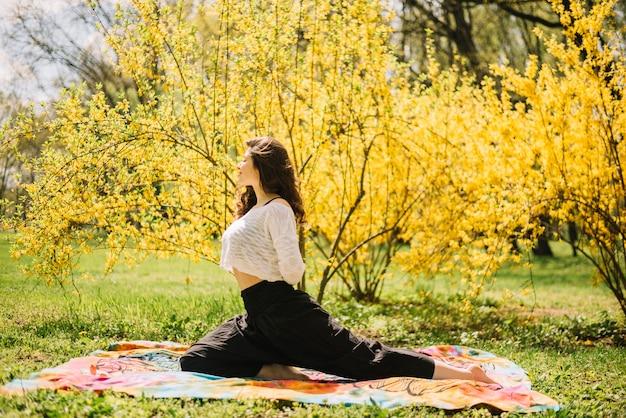 公園で運動しながら彼女の体を伸ばして女性の側面図 無料写真
