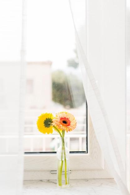 花瓶の装飾的な花 無料写真