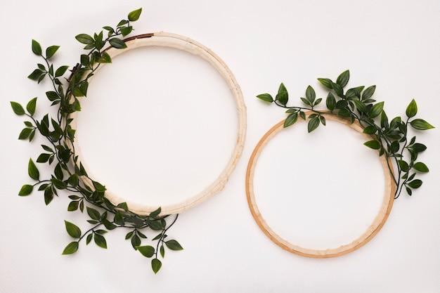 白い背景に緑の葉と大小の木製円形フレーム 無料写真