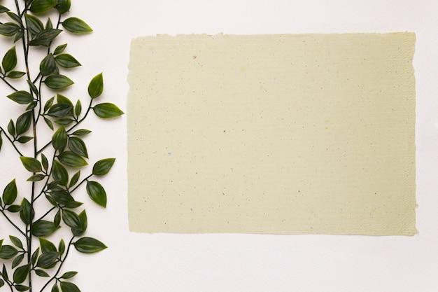 Бланк текстурированная бумага возле зеленого растения на белом фоне Бесплатные Фотографии