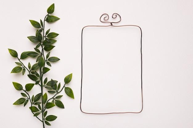 Зеленое растение оставляет возле пустой рамки изолирован на белом фоне Бесплатные Фотографии