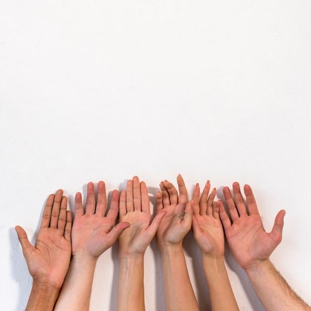 無地の白い表面に対して彼らの手のひらを示す多様な人々 無料写真