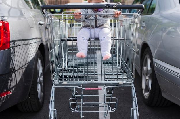 赤ちゃんと一緒に買い物カゴ 無料写真