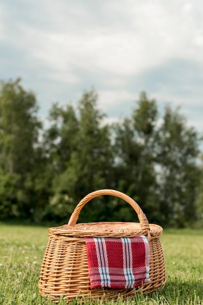 公園の芝生の上のピクニックバスケット 無料写真