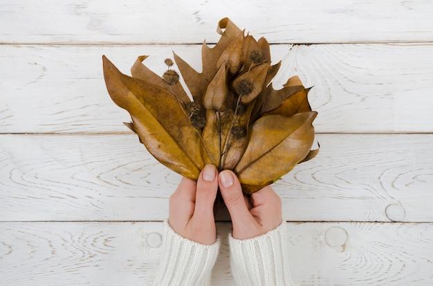 トップビュー両手秋の葉 無料写真