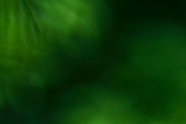 クローズアップのぼやけた植物のテクスチャ 無料写真