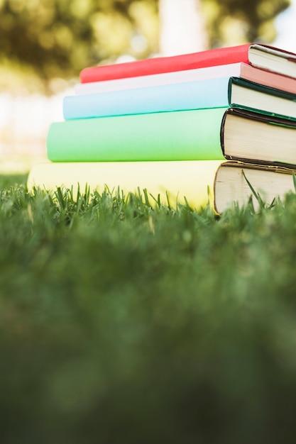 緑の芝生の上の明るいカバーと教科書の山 無料写真