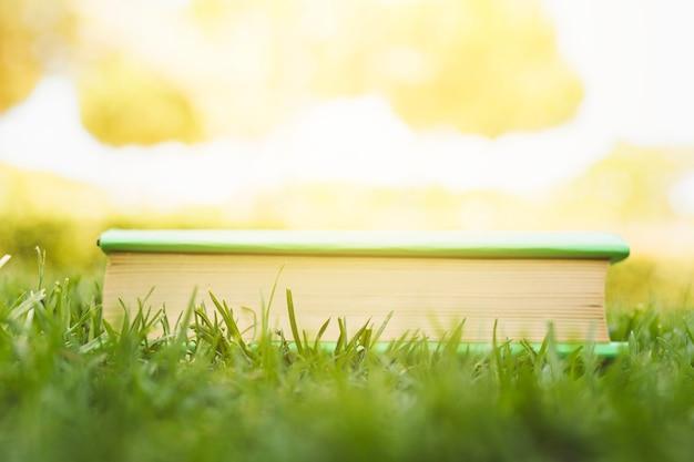日光で草の上の閉じた本 無料写真