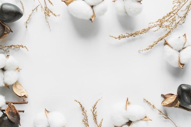 綿の花の上から見る 無料写真