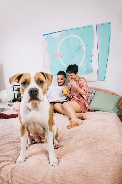 Собака с хозяевами по утрам Бесплатные Фотографии