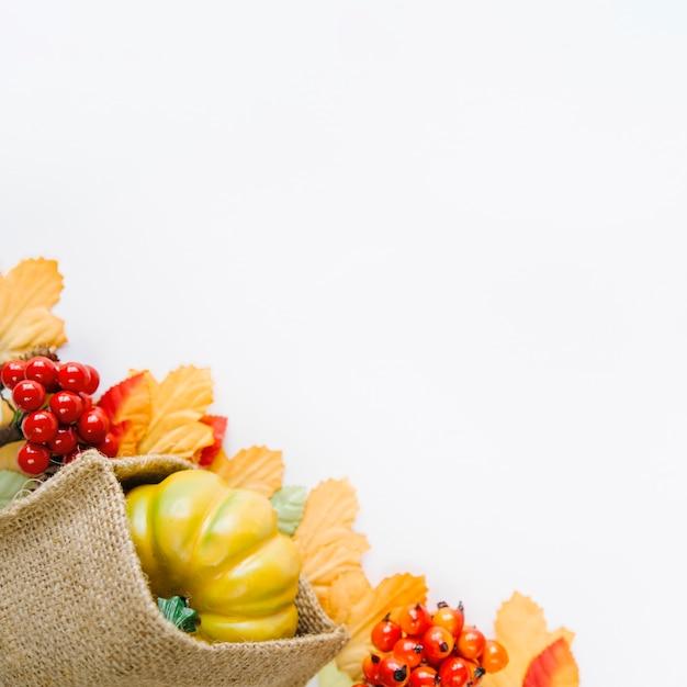白い背景の上の秋の収穫 無料写真