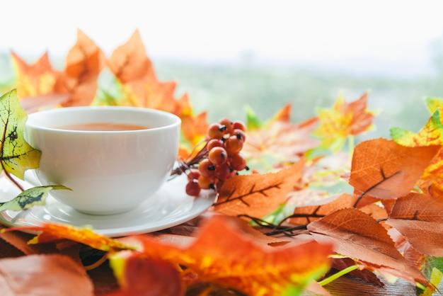 秋の葉の間でお茶セット 無料写真