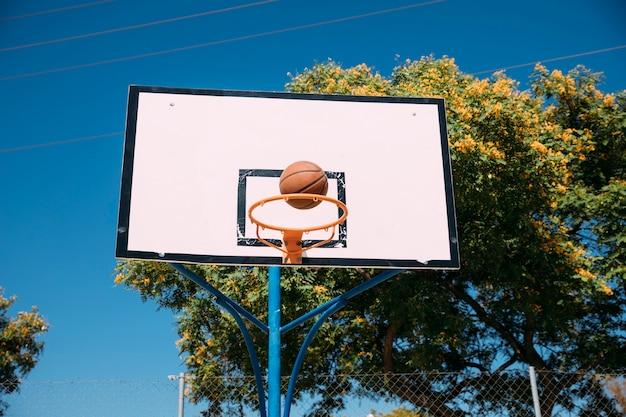 成功したバスケットボールフープシュート 無料写真
