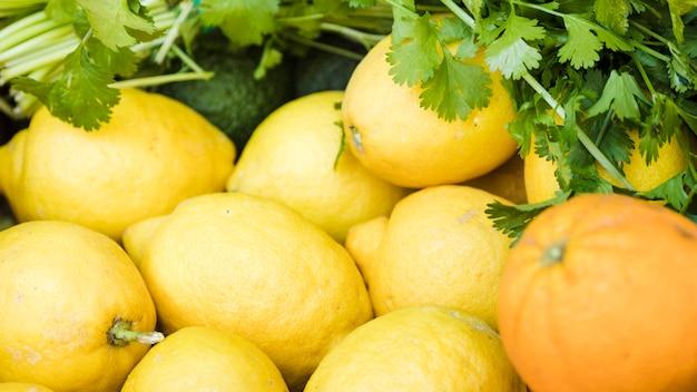 Крупный сочный лимон со свежим кориандром в рыночных прилавках Бесплатные Фотографии