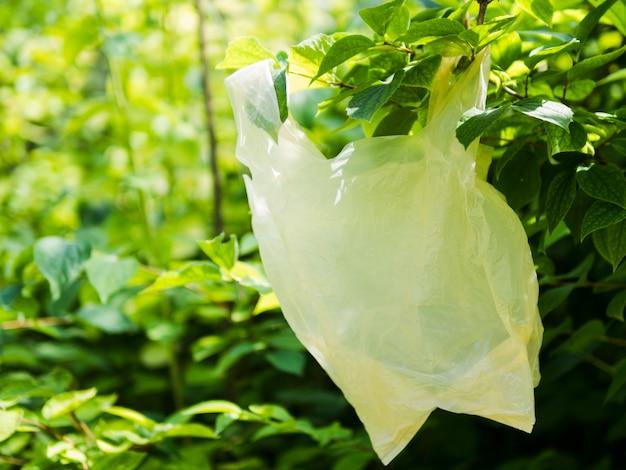 Крупный план полиэтиленовый пакет висит на ветке зеленого дерева Бесплатные Фотографии