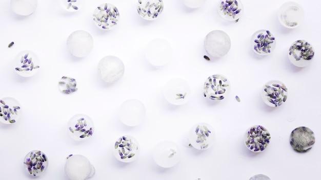 白い背景の上のアイスキューブの冷凍花 無料写真