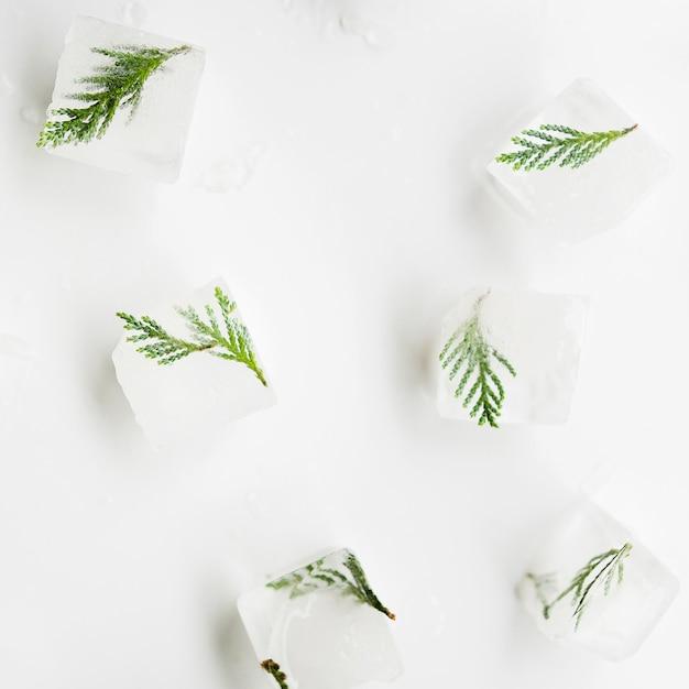 アイスキューブの木の針 無料写真