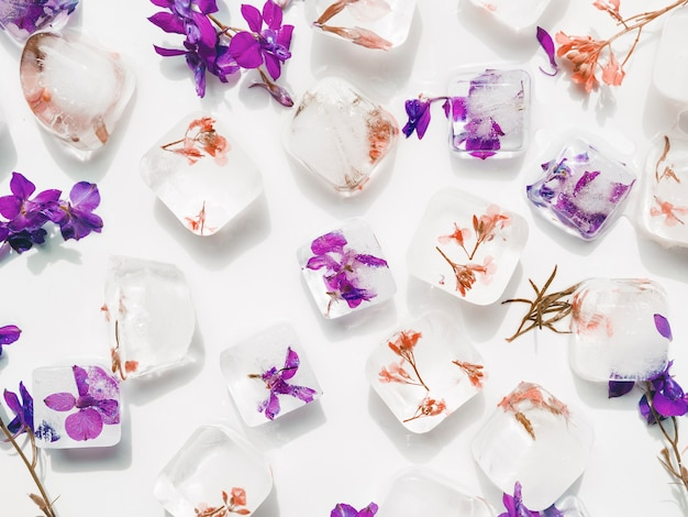 アイスキューブの紫と赤の花 無料写真
