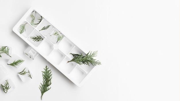 小枝と氷とアイスキューブのためのフォーム 無料写真