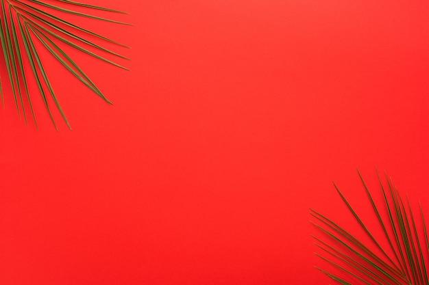 明るい赤の背景の隅にヤシの葉 無料写真
