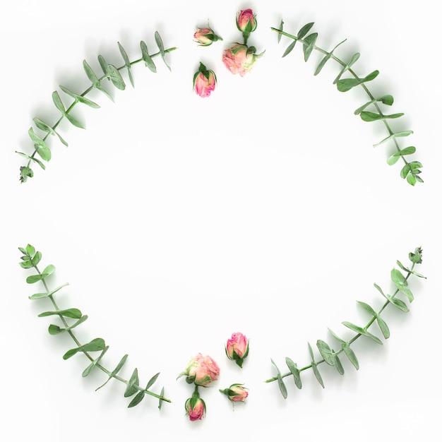 白地にピンクのバラのつぼみとユーカリのトップビュー 無料写真
