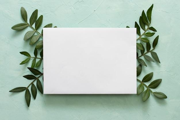 織り目加工の背景の上の緑の葉の空白のホワイトペーパー 無料写真