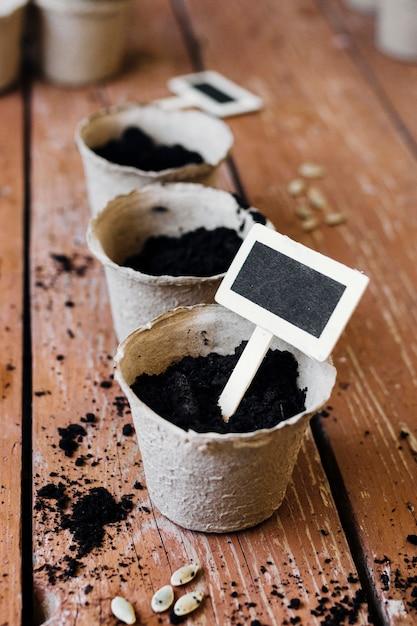テーブルの上の正面の植木鉢 無料写真
