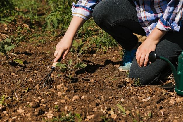 庭師は庭でひざまずいて 無料写真