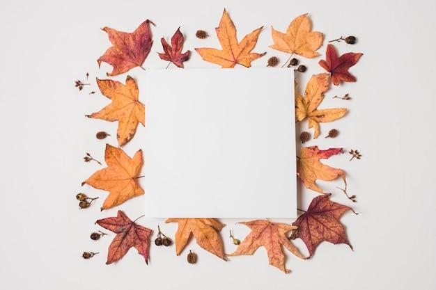 秋の紅葉フレームと空白のコピースペース 無料写真