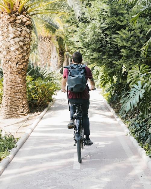 自転車レーンでサイクリング男の背面図 無料写真