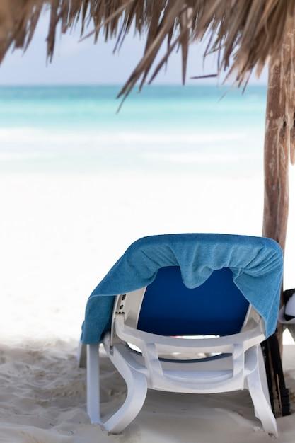 海岸で背面図ビーチチェア 無料写真
