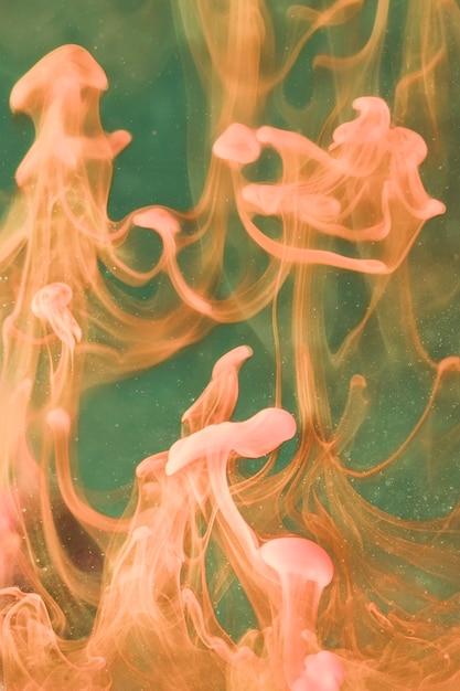 水中の水中ゼリーを踊る 無料写真