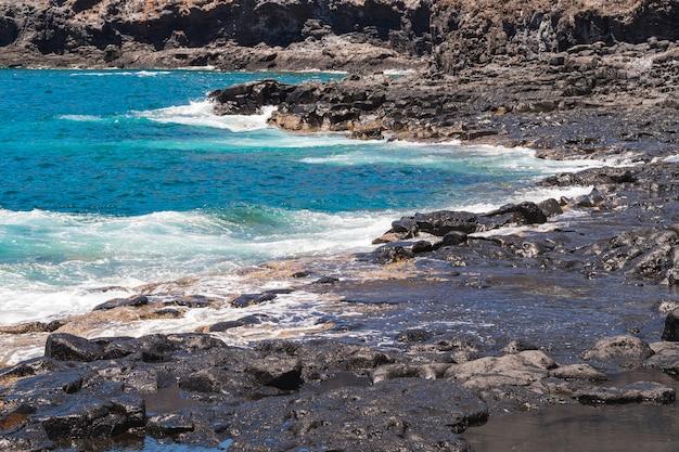 野生のビーチでロングショットの結晶水 無料写真
