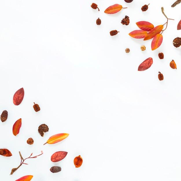 Плоские лежал осенние листья с копией пространства Бесплатные Фотографии