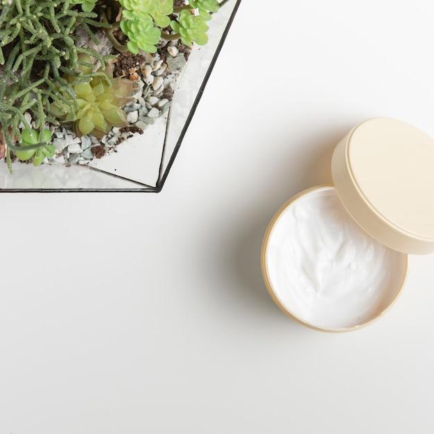 Масло для тела с элементами природы на белом фоне Бесплатные Фотографии