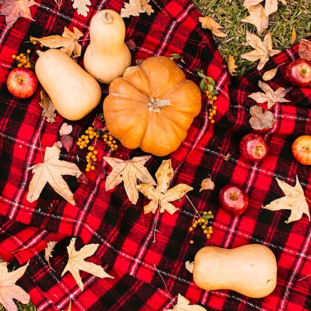 カボチャと秋のピクニック 無料写真