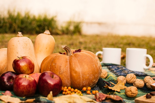 カボチャと正面のピクニック 無料写真