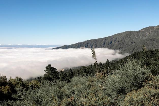 雲の上の美しい山の風景 無料写真