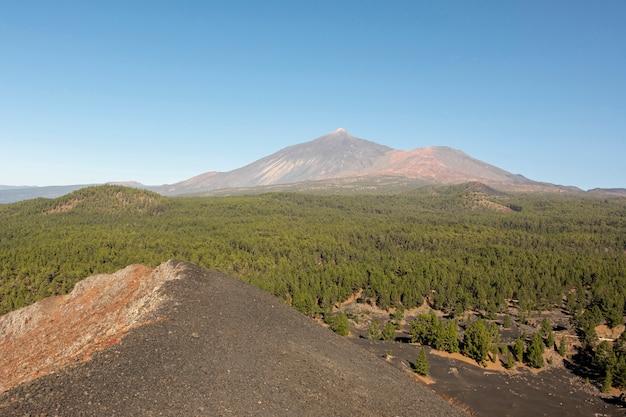 森と遠くの山頂 無料写真