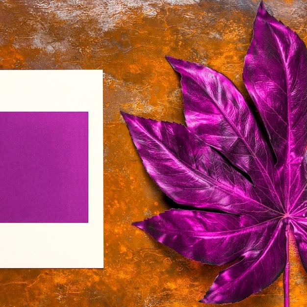 紫の招待状とテーブルの上の葉 無料写真
