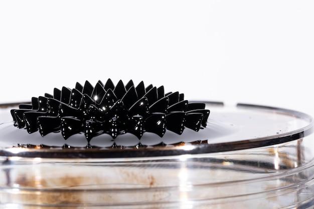 ガラス製のプレート上の黒いネオジム磁石 無料写真