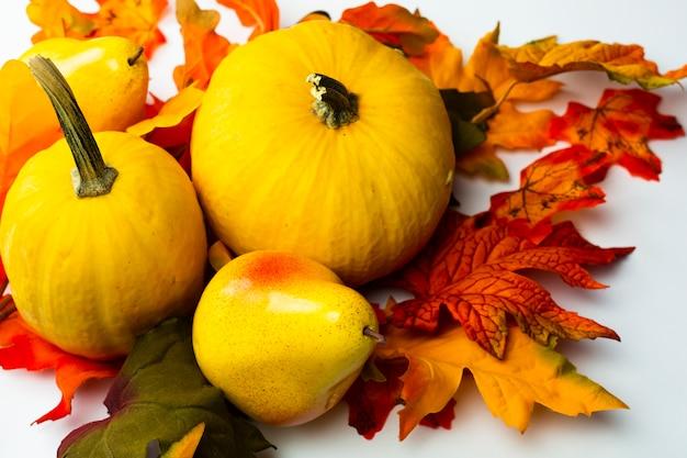 秋の葉のクローズアップ料理 無料写真