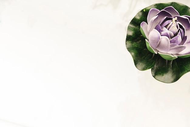 コピースペースを持つ紫色のスイレン 無料写真