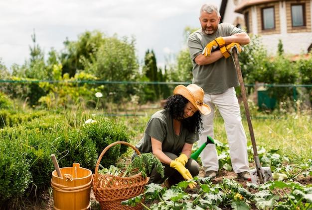 作物を気遣う正面の年配のカップル 無料写真