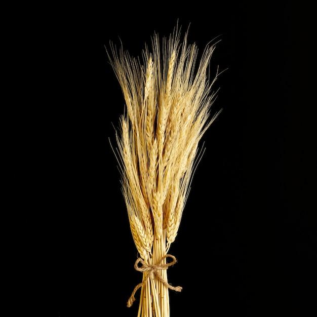 黒い背景にクローズアップ小麦 無料写真