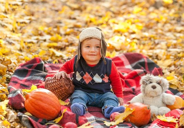ピクニック毛布に毛皮の帽子のかわいい赤ちゃん 無料写真