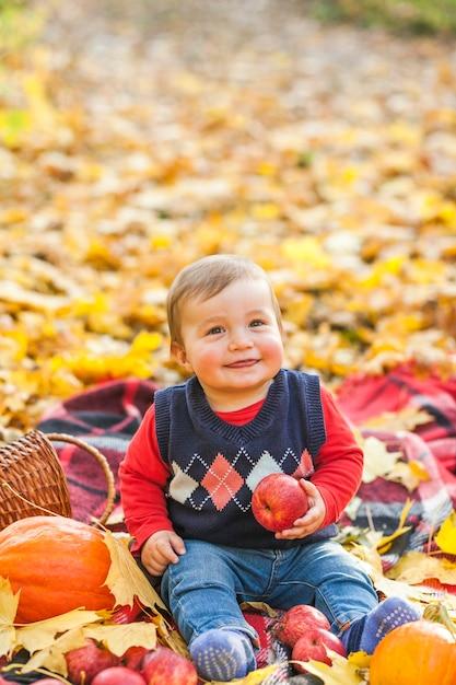 リンゴを保持しているかわいい男の子 無料写真