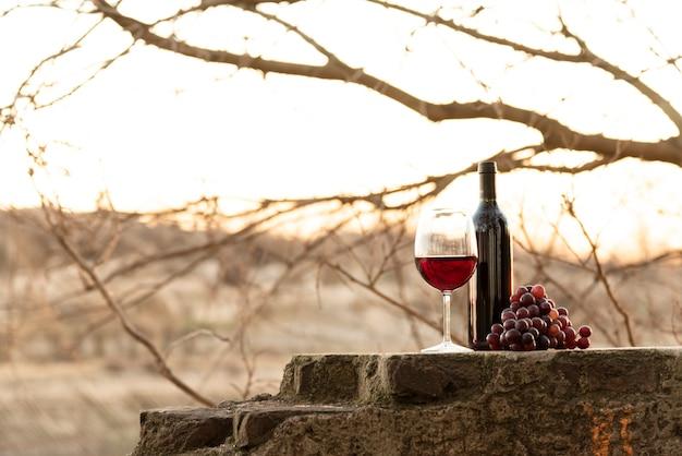 フルショットワインボトルとグラスブドウ 無料写真