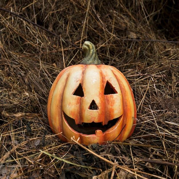 乾燥した葉にカボチャを刻んだ 無料写真