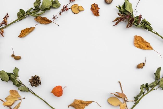 秋の紅葉とトップビュー円形フレーム 無料写真